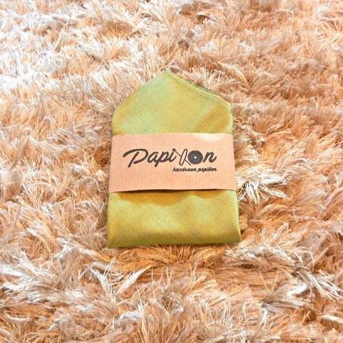 pochette-seta-verde-cangiante